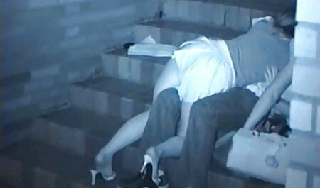 رابطه دانلود رایگان فیلم سکسی کوتاه جنسی در جدول با پر زرق و برق, سگ ماده, در, صورتی, جوراب ساق بلند